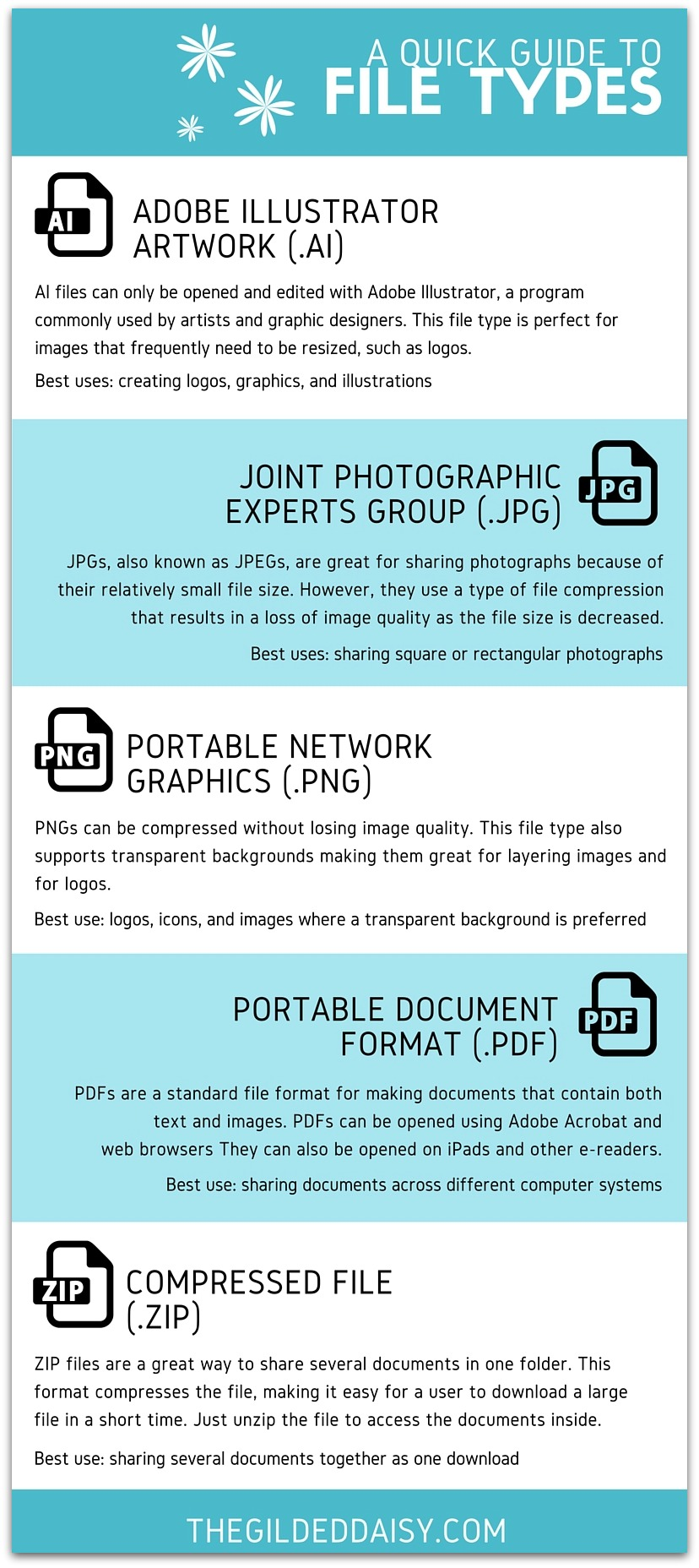 Guide to File Types Infographic