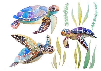 Mosaic Turtles